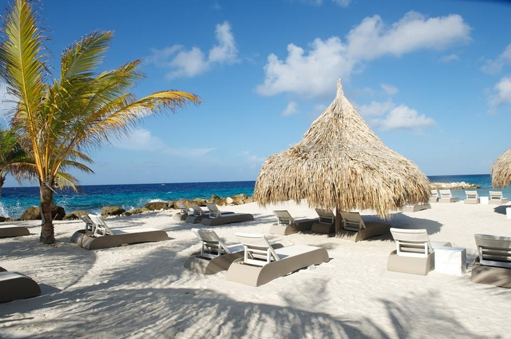 Favorite evening spot: Zest Beach at Jan Thiel, Curacao