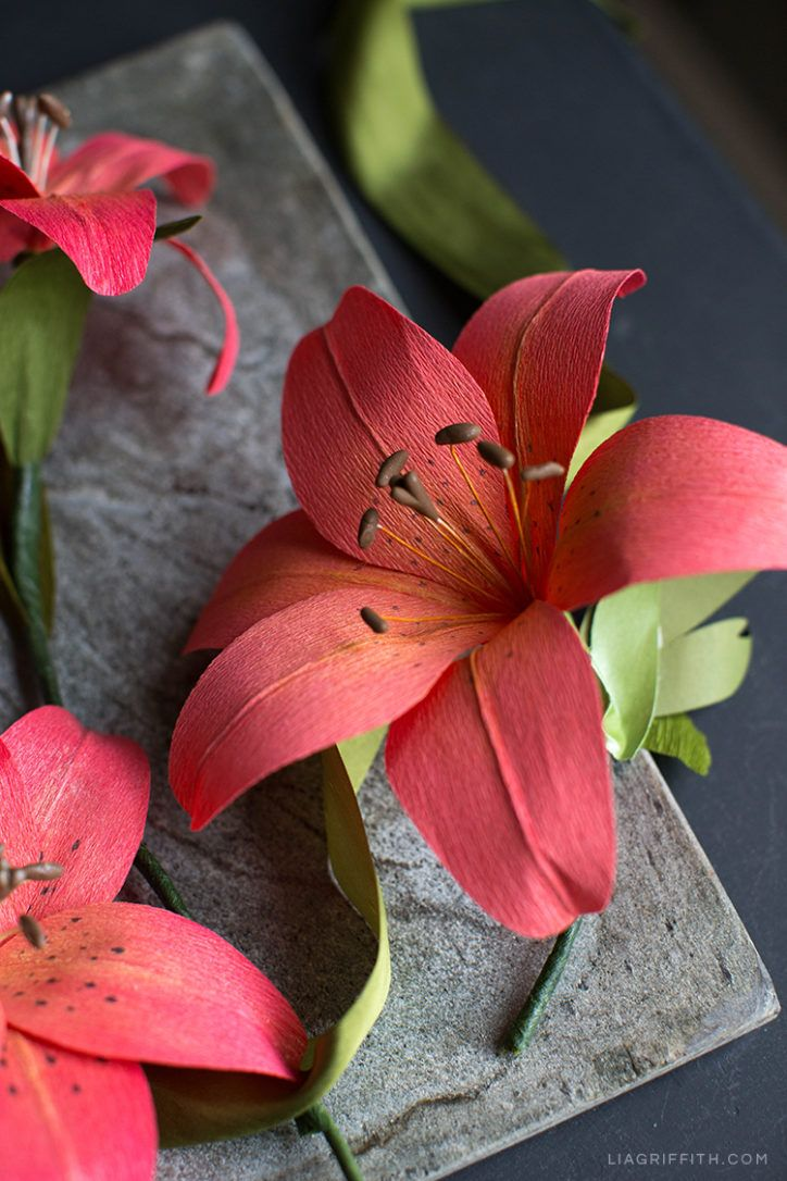 Make This Stunning Crepe Paper Tiger Lily Tissue Paper Flowers