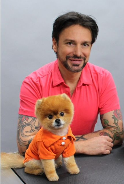 Houston Dog Groomers - Mobile & In-Shop Dog Grooming