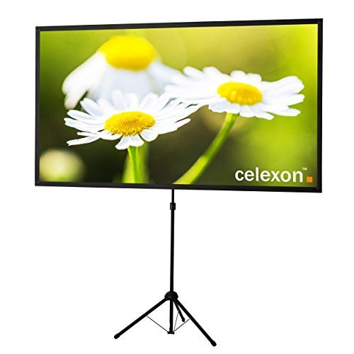 portable projector screen with stand and case