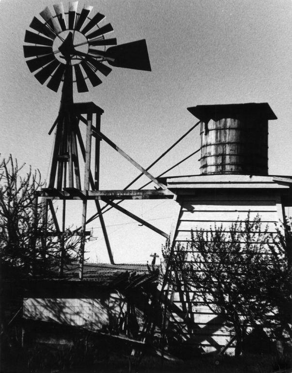 Title:  Windmill, Santa Rosa, California  Creator/Contributor:  Stacy, Cindy  Date:  Circa 1974-1976  Contributing Institution:  Sonoma State University Library