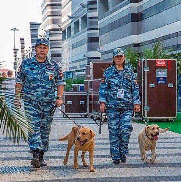 С 8 по 11 октября в Сочи пройдет Российский этап Чемпионата мира по шоссейно-кольцевым гонкам серии «Формула-1». Охранять общественный порядок в период проведения Гран-При «Формула-1» в Сочи будут более 3 тысяч полицейских.