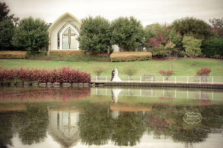 Beautiful Wedding shot at Hunter Valley Gardens