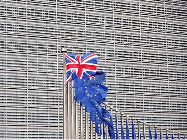 'Brexit' camp takes lead in EU referendum opinion polls - The Economic Times