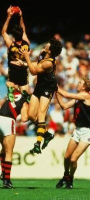 David Bourke marks 1996