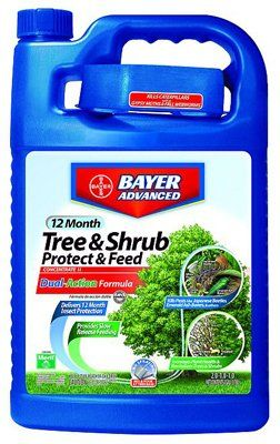 Sbm Life Science 701615A Advanced Tree & Shrub Protect & Feed, 1-Gal. >  Gallon, Concentrate, Tree & Shrub Insect Control II, Provides 12 Month Insect Protection With 1 Application & Prevents New Infestations, Rainproof Protection, Kills Japanese Beetles Adult, E... Check more at http://farmgardensuperstore.com/product/sbm-life-science-701615a-advanced-tree-shrub-protect-feed-1-gal/