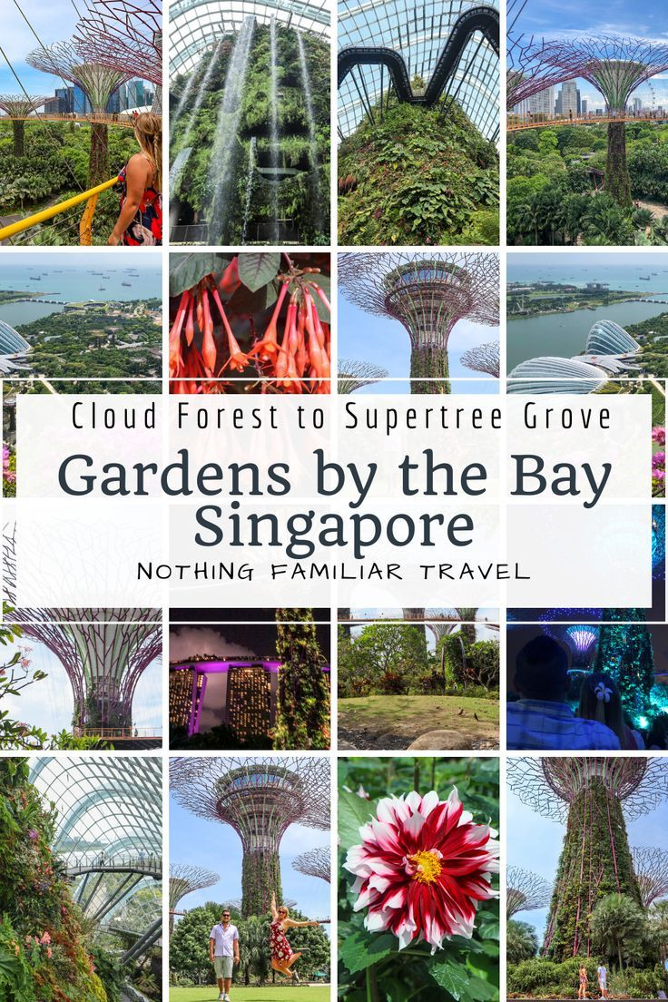 9ab6c9ca9327a54fe121cdad42c2dbee - Gardens By The Bay Opening Times