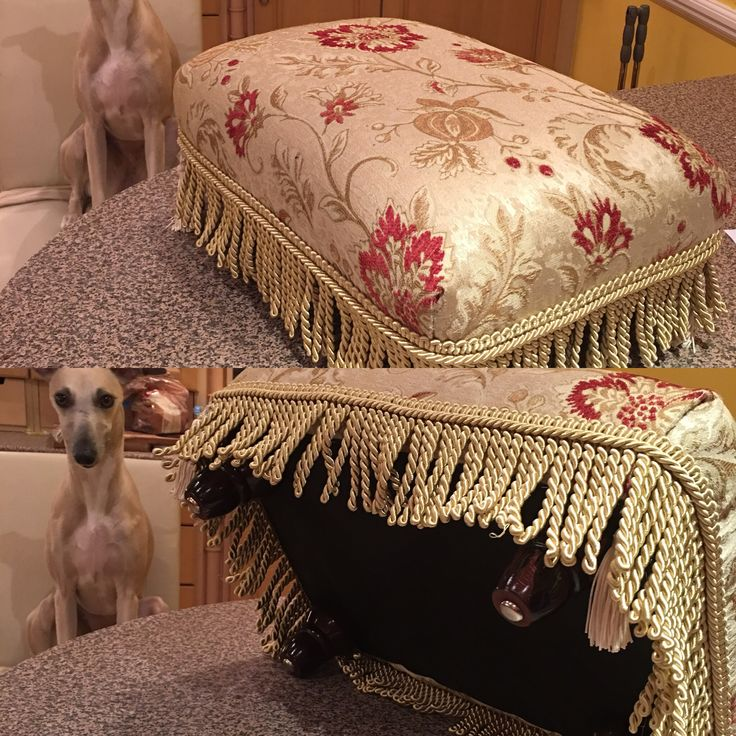 First commission. Upholstered footstool with gorgeous gold thread jacquard, bullion fringe and mahogany bun feet. As modelled by Janey Whippet, aged 3.