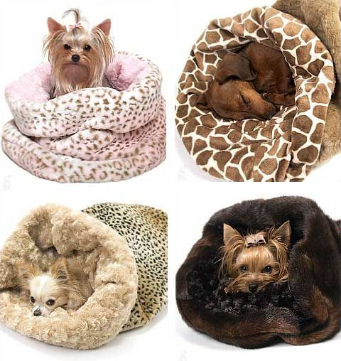 Small dog beds.