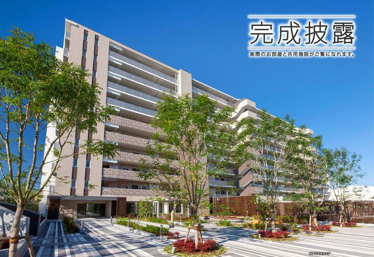 金町・亀有・高砂のマンション アデニウム ザ・オアシスガーデン 【公式】