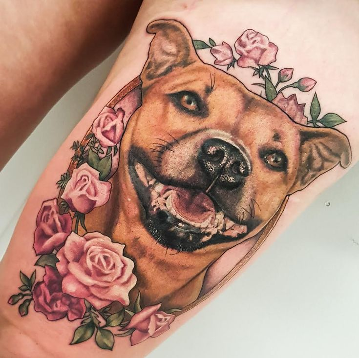 fuckyeahtattoos: Staffy portrait by Drea Darling Brisbane Australia. Website | Tumblr | Instagram | Facebook