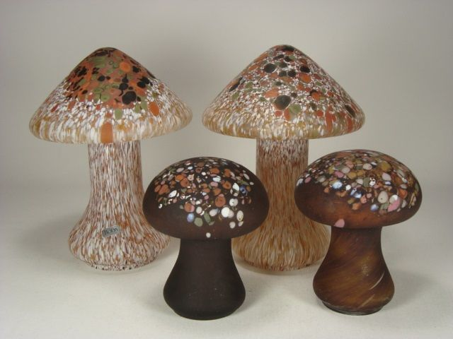 5564 Mushrooms boda 1.jpg