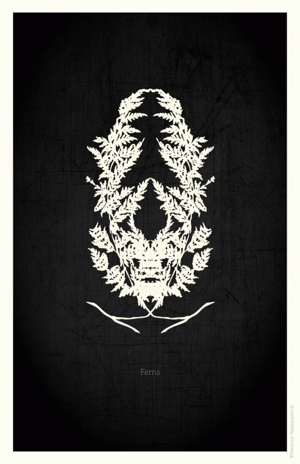 Flowers Poster Series by Veronica Velasquez, via Behance