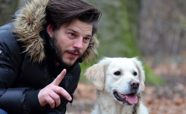 Comportementaliste canin : qu'est-ce que c'est ? Comment le choisir ?
