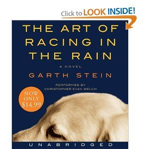 Amazon.com: The Art of Racing in the Rain Low Price CD (9780061780301): Garth Stein, Christopher Evan Welch: Books