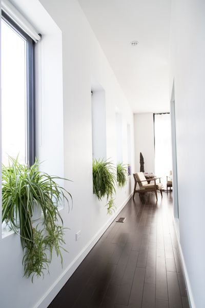 GARDENS | Sprout Home