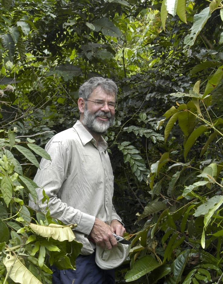 Dr Martin Cheek of Kew Garden's in his element searching out species in the Congalese rainforest.