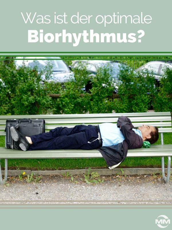 Viele Führungskräfte und Unternehmer berücksichtigen nicht, dass der Biorhythmus ihrer Mitarbeiter essentiell deren Wohlbefinden beeinflussen kann.