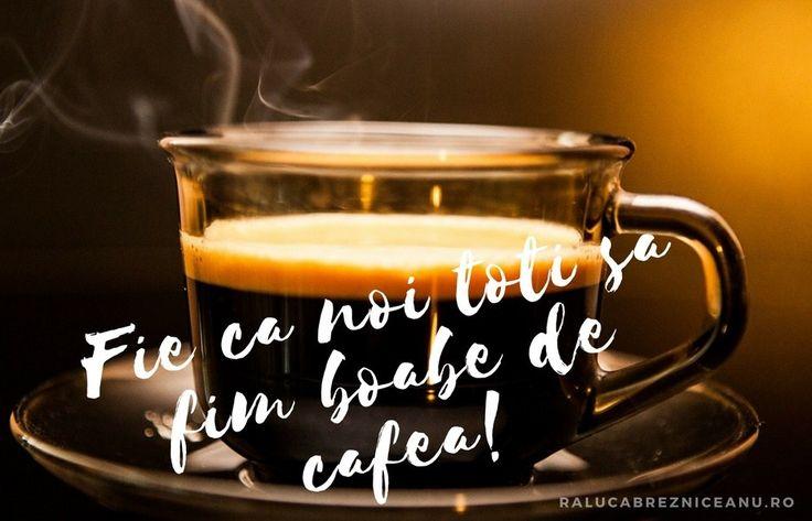 De cate ori a fost introdusa pe un teritoriu nou, cafeaua a scris revolutie.