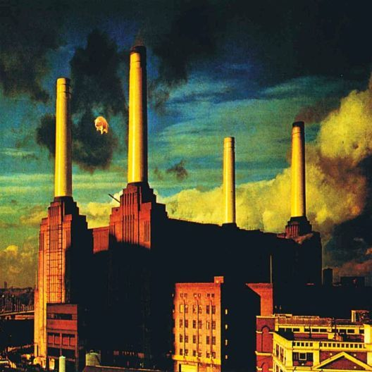 "Pink Floyd - Animals (1977).   While not their most well liked effort true fans hail the epic songs ""Sheep"" and ""Pigs"" as bona fide classics."