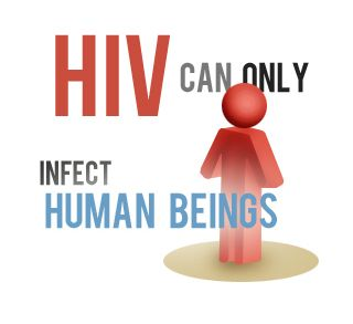 """HIV"" stands for Human Immunodeficiency Virus. To understand what that means, let's break it down: H – Human – This particular virus can only infect human beings. I – Immunodeficiency – HIV weakens your immune system by destroying important cells that fight disease and infection. A ""deficient"" immune system can't protect you. V – Virus – A virus can only reproduce itself by taking over a cell in the body of its host."