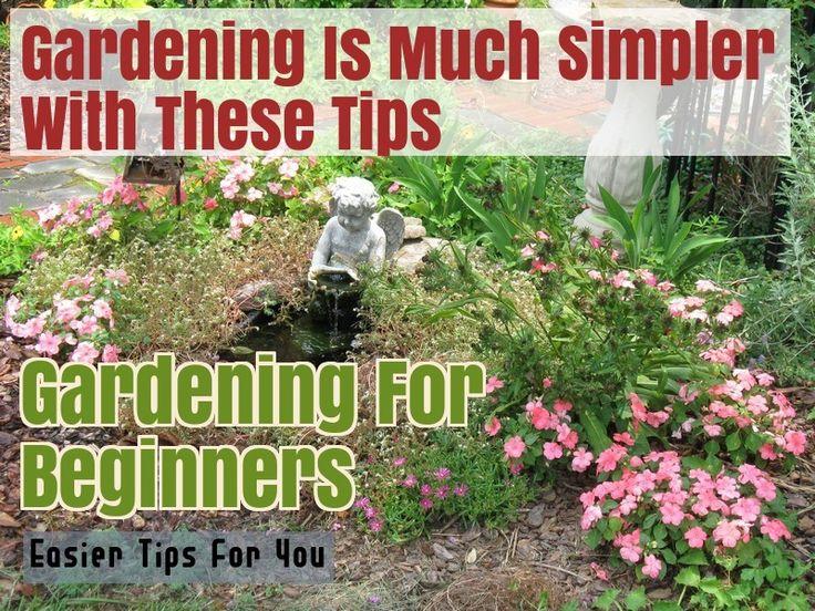 How To Start Your Own Organic Garden – Gardening Ideas