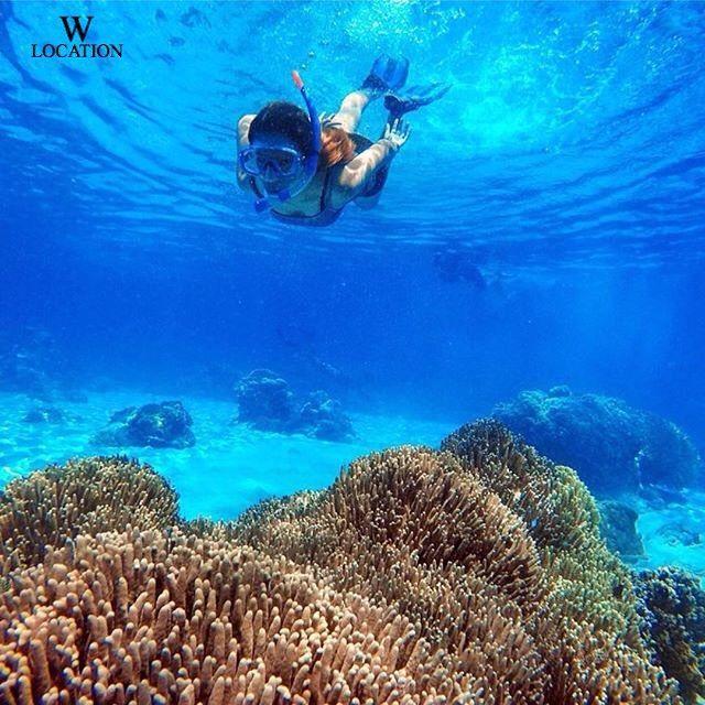 Teluk Jikomalamo, Ternate, Maluku Utara Postingan disponsori oleh @supplierlegging Silahkan di cek untuk koleksi koleksinya. . Tap 2x dan Tag 5 teman kamu, jika kamu sangat ingin berada disana bersama mereka. . Photo by : @novalbadjiser
