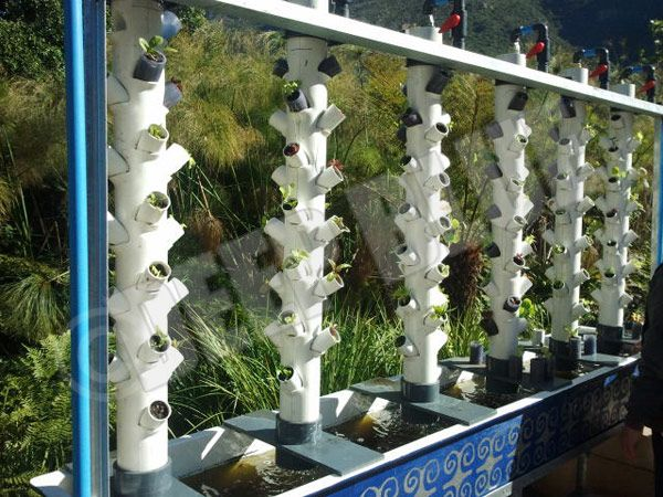 Aquaponics Trout Farming Plans Diy Aquaponics In The