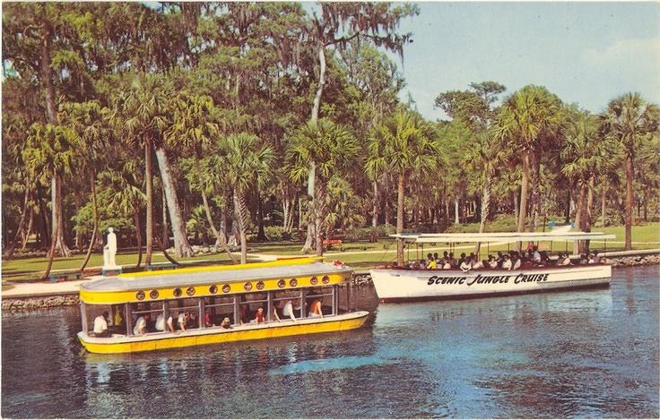 Vintage Florida Postcard - Silver Springs - Scenic Jungle Cruise Glass Bottom Boats.
