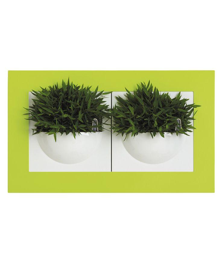 Regalos que encantan: Green Gallery Double color Verde Elho en Dekosas.