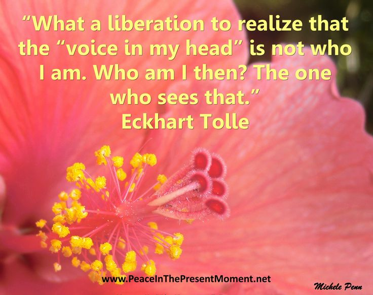 I am the creator and photographer of the book, Peace in the Present Moment with New York Times best-selling authors Eckhart Tolle and Byron Katie. I am also an inspirational speaker, best-selling author, award-winning photographer and affirmations specialist. Peace and love, Michele Penn www.PeaceInThePresentMoment.net