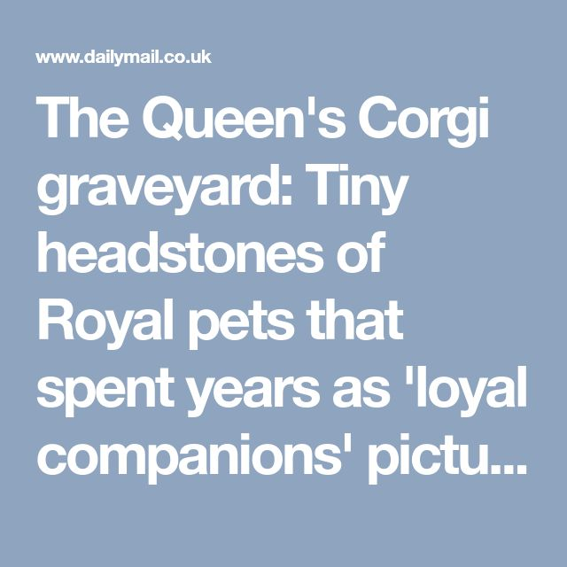 The Queen's Corgi graveyard: Tiny headstones of Royal pets that spent years as 'loyal companions' pictured in quiet corner of Sandringham