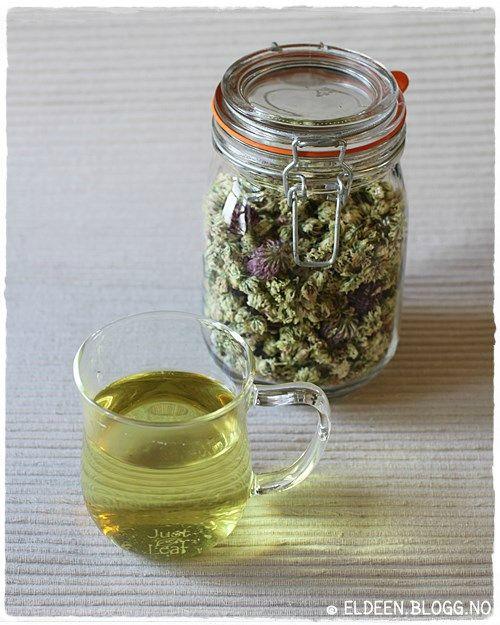 Hjemmelaga te av kløverblomster. (~Eldeen~)