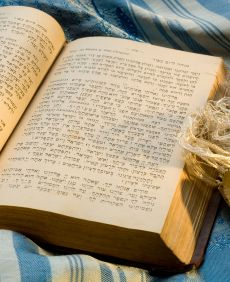 Siddur Live is a site for learning the Shabbat prayers and melodies, and includes Hebrew and transliterations in English. For more Hebrew resources check out the Resources page of www.holylanguage.com!