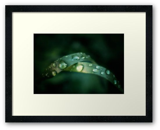 """""""Combined"""" #photo #art #design in #redbubble. Available in many #products"""
