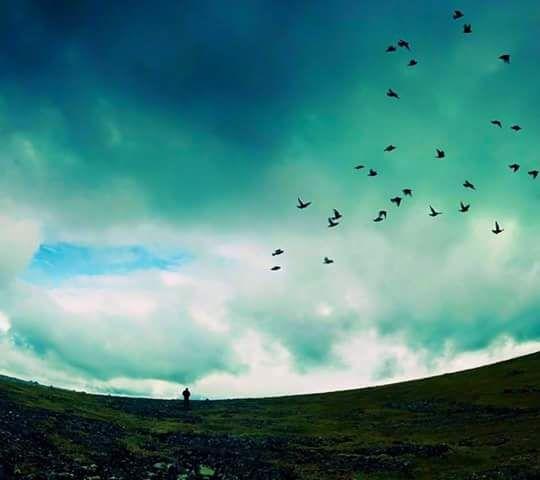 Çile nedir, günah ne? Bana ne bunlardan. dünyanın merkezi sendin her gün ben senden uzayan uçsuz bucaksız bir kara …  Birhan Keskin