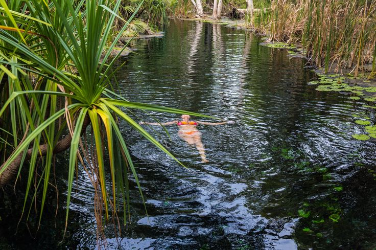 Floating in Bitter Springs