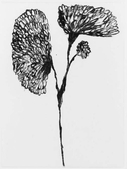 Louise Bourgeois, Etching for Homely Girl, A Life, 1992.