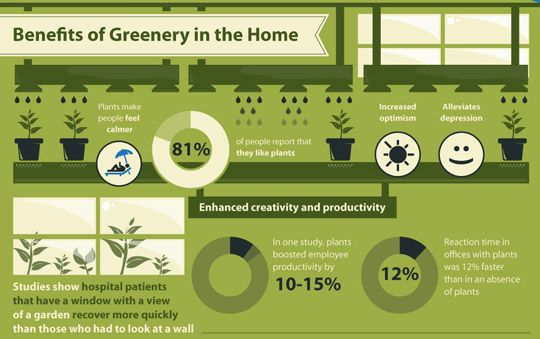 plant infographic: Thoughts, At Home, Benefits Of, Offices, Apartment Therapy, Houseplant, Health Benefits, Houses Plants, Indoor Plants