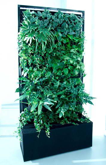 Mobilna zielona ściana
