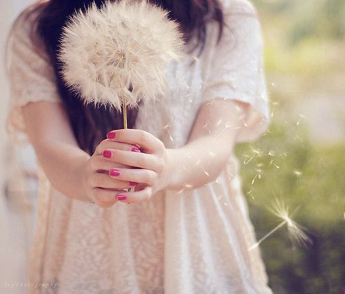 .: Pink Summer, Cabbages Roses, Girls Generation, Inspiration Pictures, Mr. Big, Dandelions, Photo, Flower Girls, Flower Types