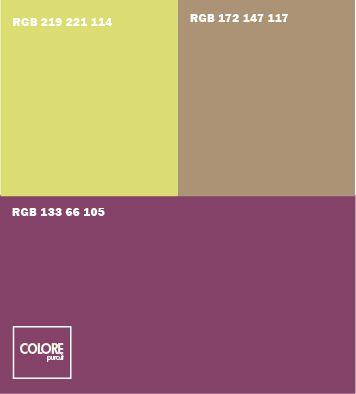 Abbinamento colori viola   marrone chiaro   giallo verde
