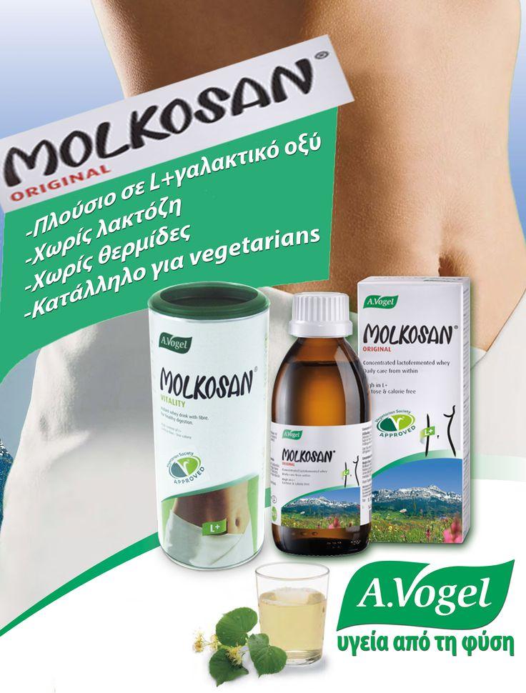 Το L(+) γαλακτικό οξύ, κύριο συστατικό του Molkosan βοηθάει όλο το γαστρεντερικό σύστημα να επαναλειτουργήσει σωστά. Οι ολιστικοί γιατροί το ονομάζουν πρεβιοτικό. Το πρεβιοτικό πρέπει να βρίσκεται στον οργανισμό πριν και κατά τη διάρκεια λήψης προβιοτικών συμπληρωμάτων για να μπορέσουν τα τελευταία να είναι αποτελεσματικότερα.