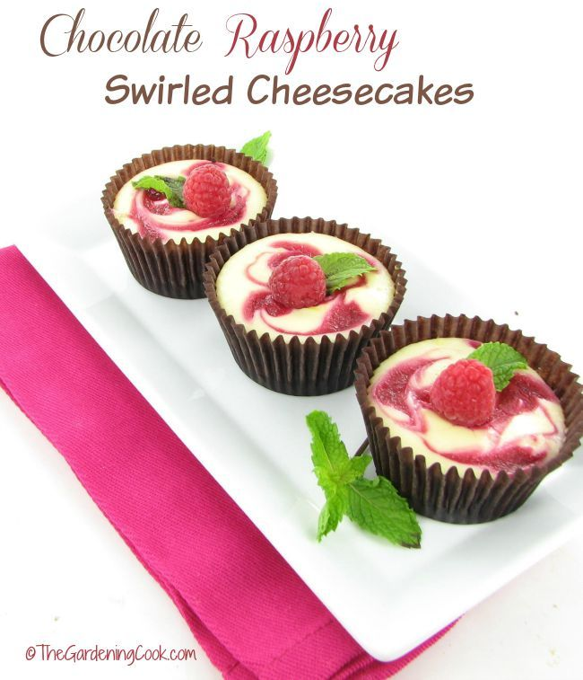 These chocolate raspberry swirled mini cheesecakes are the perfect ending to any special occasion.