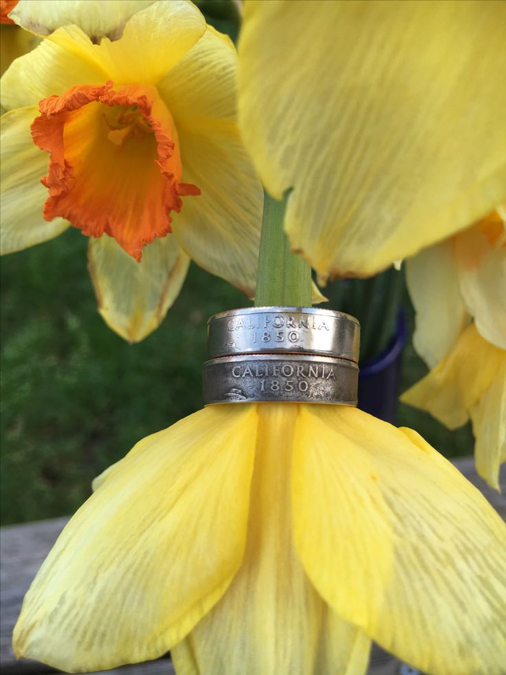 California State Quarter Ring set in bright and aged finishes