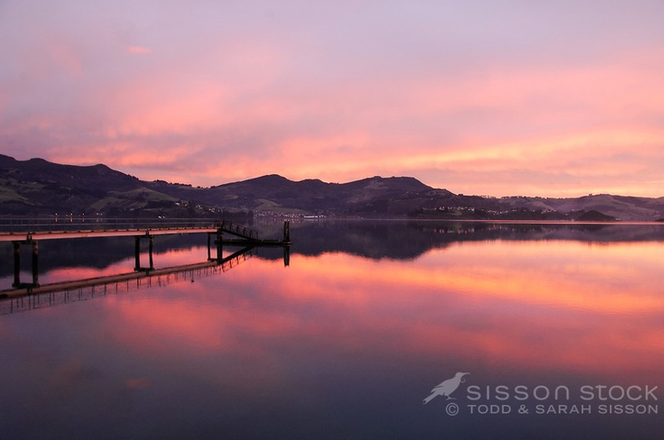 Vivid sunrise colours reflected in Otago Harbour at Broad Bay, Otago peninsula.