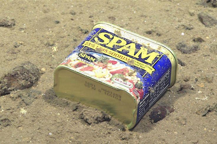 Fossa delle Marianne: Anche a grande profondità non potevano mancare i rifiuti: questa latta è stata fotografata a quasi 5mila metri sotto il livello del mare