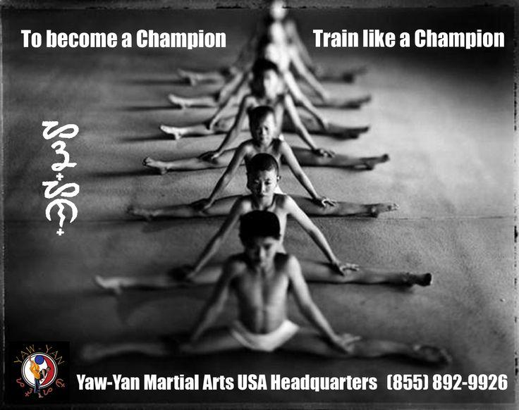 To become a Champion... Train like a Champion!
