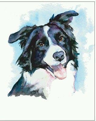 Border Collie Agility Dog Pet Portrait Fine Art Watercolor Print 8x10 | eBay