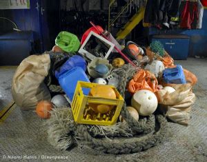 Plastik im Meer: Gefahr für ein ganzes Ökosystem